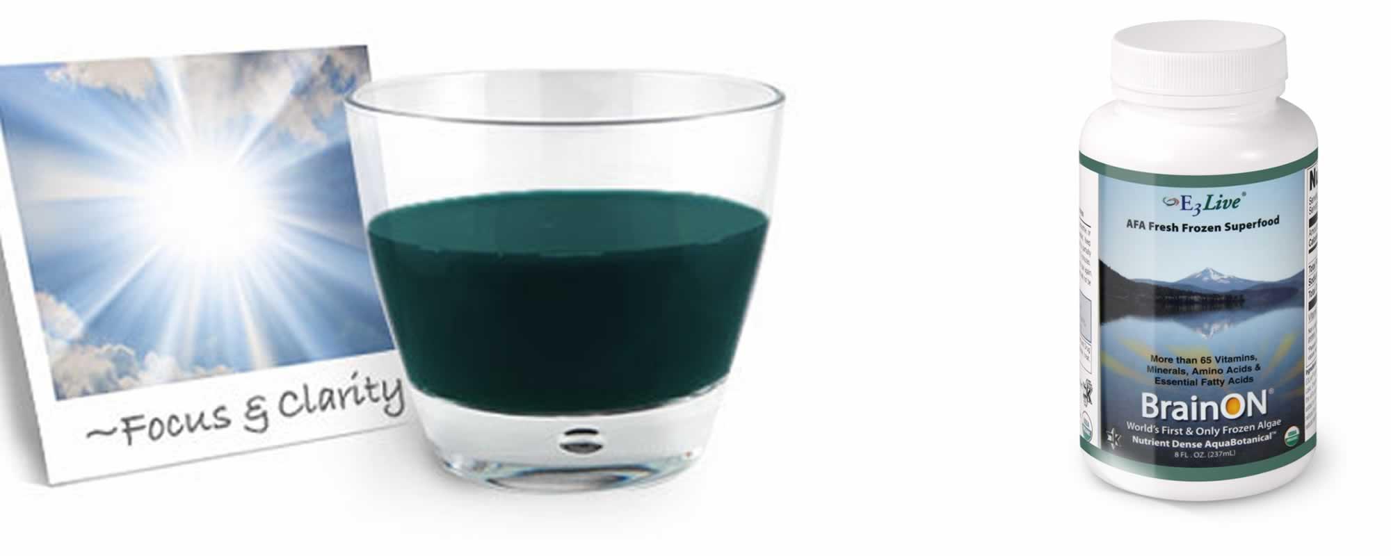 E3Live - Blue Green Algae