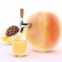 Mango-Pineapple-Madness